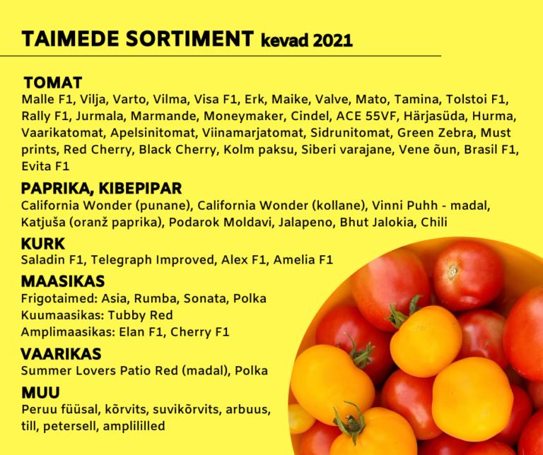 Tomati-sordid-ristemae-talu